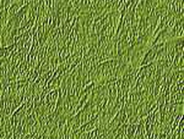 Erba prato grass lawn 247