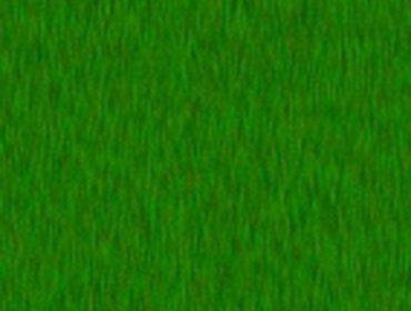 Erba prato grass lawn 25