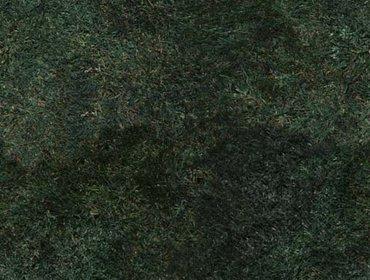 Erba prato grass lawn 254