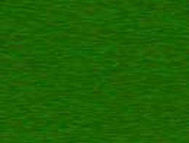 Erba prato grass lawn 262