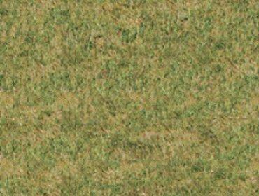 Erba prato grass lawn 266
