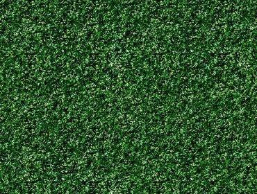 Erba prato grass lawn 274