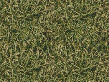 Erba prato grass lawn 30