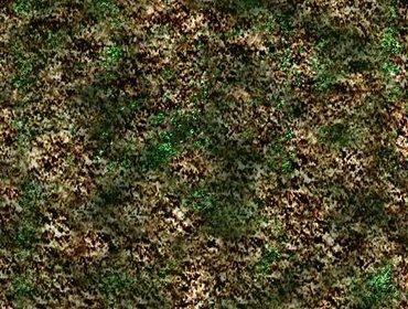 Erba prato grass lawn 32