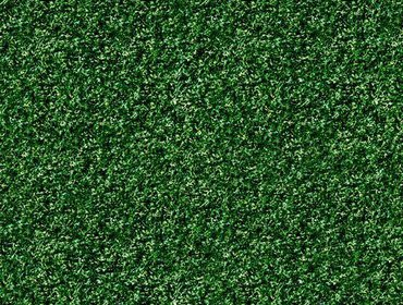 Erba prato grass lawn 35