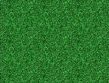 Erba prato grass lawn 67