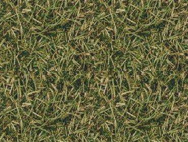 Erba prato grass lawn 68