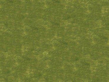 Erba prato grass lawn 72