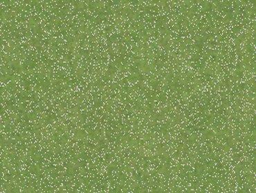 Erba prato grass lawn 75