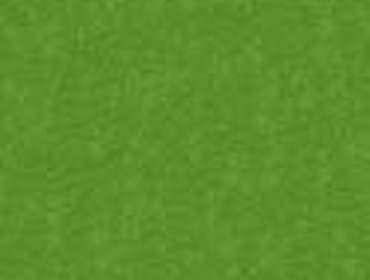 Erba prato grass lawn 80