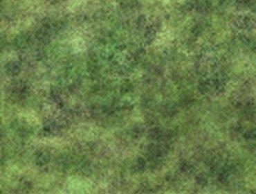 Erba prato grass lawn 90