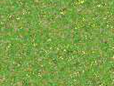 Erba prato grass lawn 91