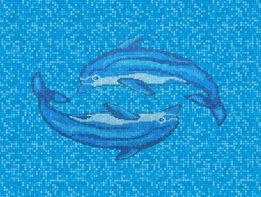 piscina con delfino 5
